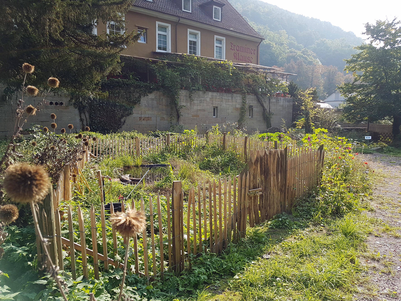 """IN PLANUNG: 1. GartenSymposium Kurpfalz """"Gärtnern in Stadt und Land"""""""